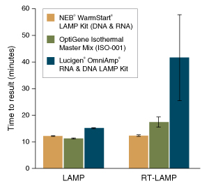 Fast LAMP/RT-LAMP results